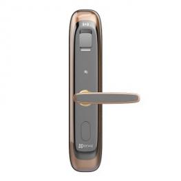 智能联动DL21S家用互联网指纹密码锁